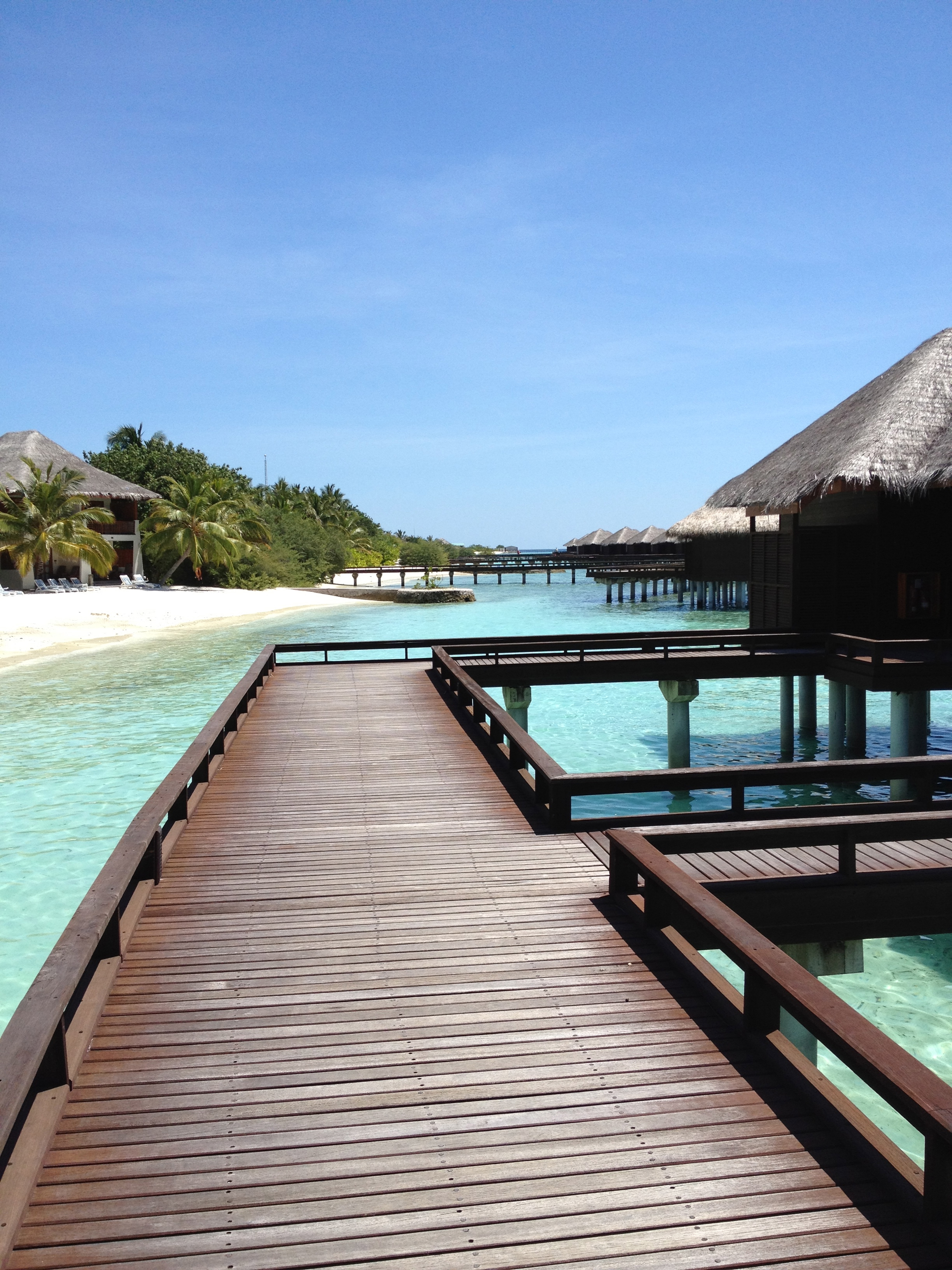 Overwater Bungalows 3