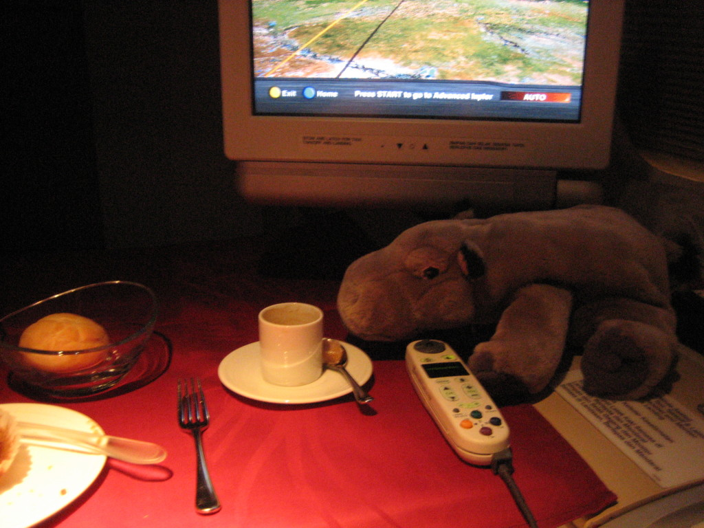 oz2005-049-breakfast hippo