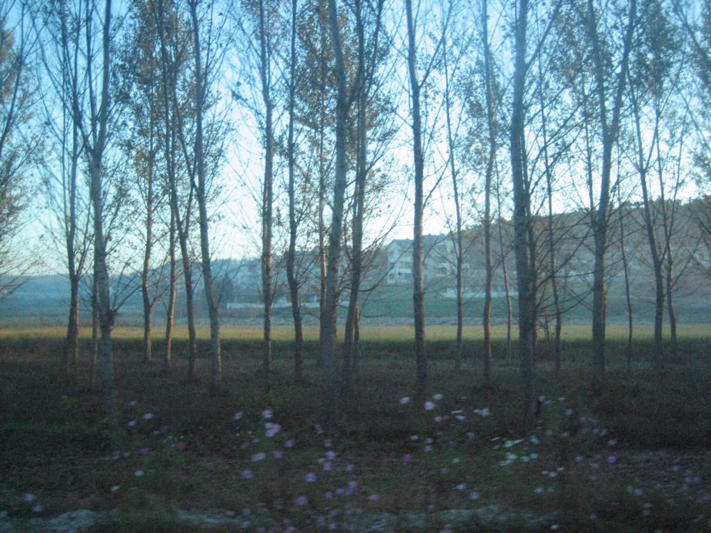 dprk-1781-airport road
